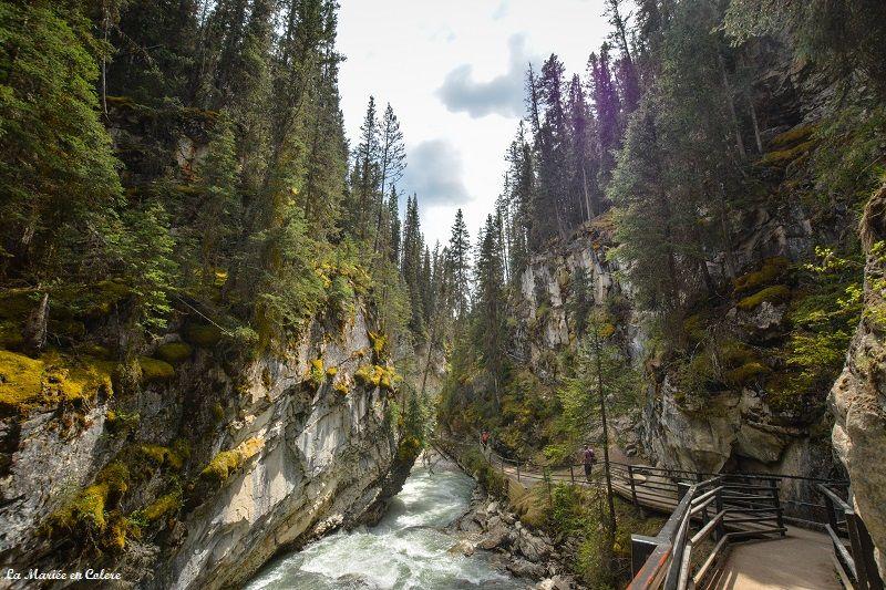 Johnston canyon Banff NP